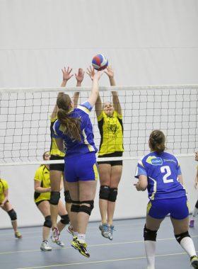 Sportportret volleybal